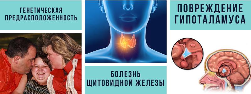 генетическая предрасположенность болезнь щитовидной железы повреждения гипоталамуса